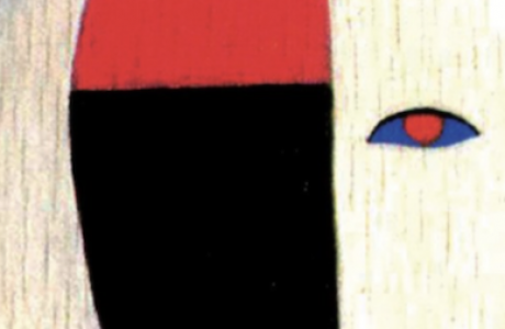 Svelare l'enigma della psicosi_ particolare_copertina