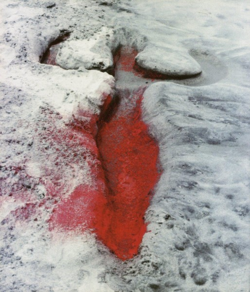 ANA MENDIETA EARTH WORK