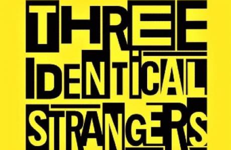 """""""Three Identical Strangers"""" di T. Wardle Recensione di A. Cordioli 1"""
